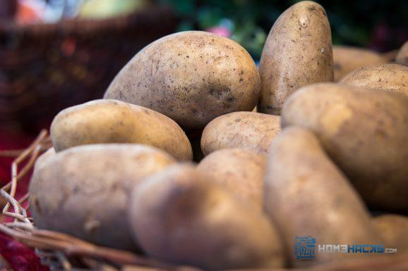 how to grow a potato tower